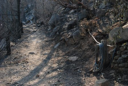 Image of a rocky path lined with charred trees and posts