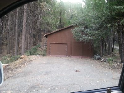 Image of a garage surrounded by a normal forest