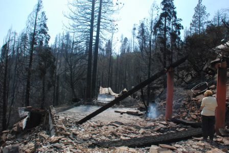 Image of smoke rising from ruins with burned trees in the background
