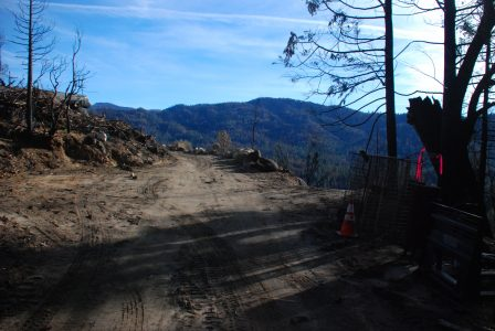 Image of the fire road with a new driveway leading off to the right