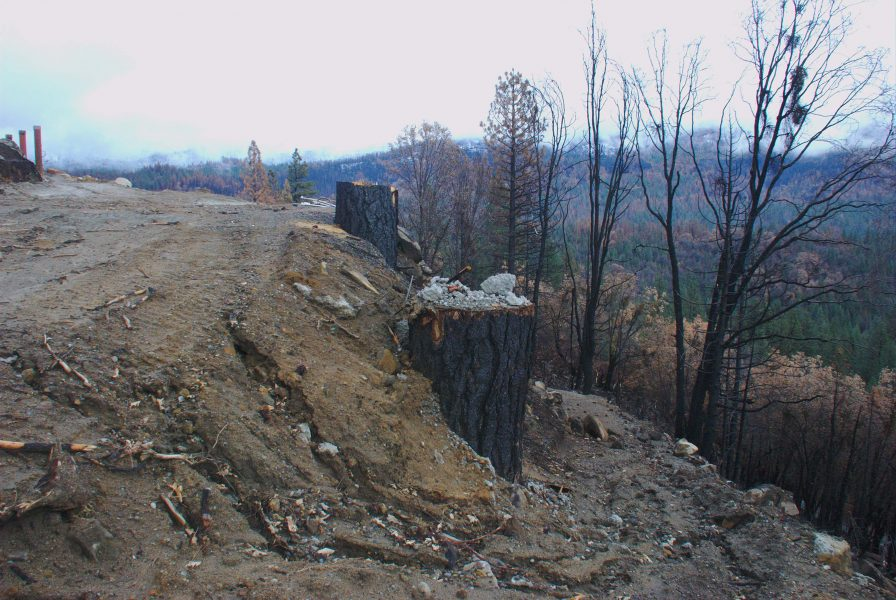 Image of a muddy hillside with deep erosion channels