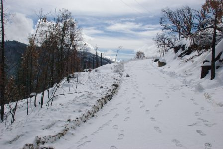 Image of the upper driveway still completely covered by snow