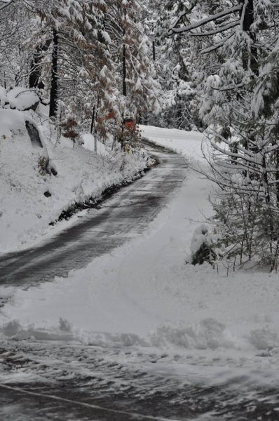 Image of one side of the driveway cleared of snow