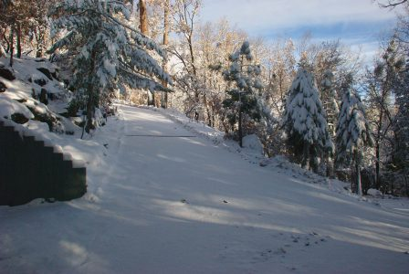 Image of a shaded, snowy driveway and sunny, blue sky