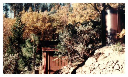 Image of brown shed in the trees with a brown water tank above and behind it